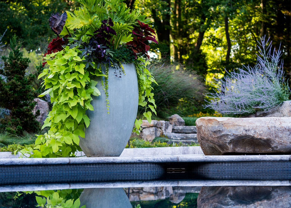 Custom Container Design Planting With Annual Flowers And Foliage