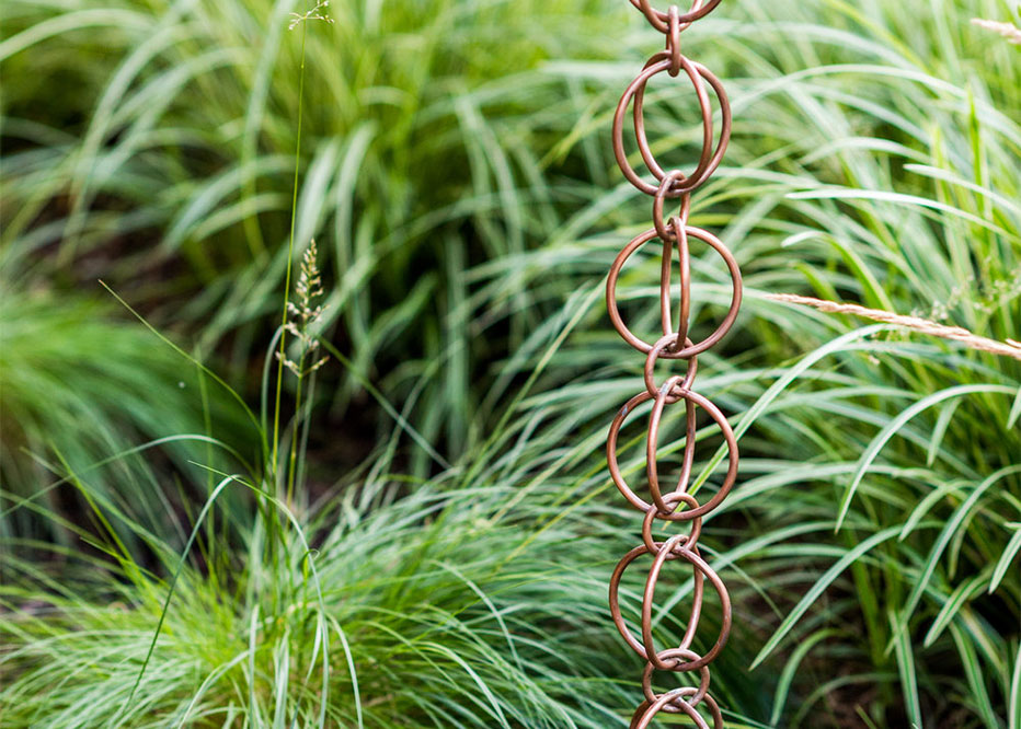 Decorative Grasses And Rain Collection Rings