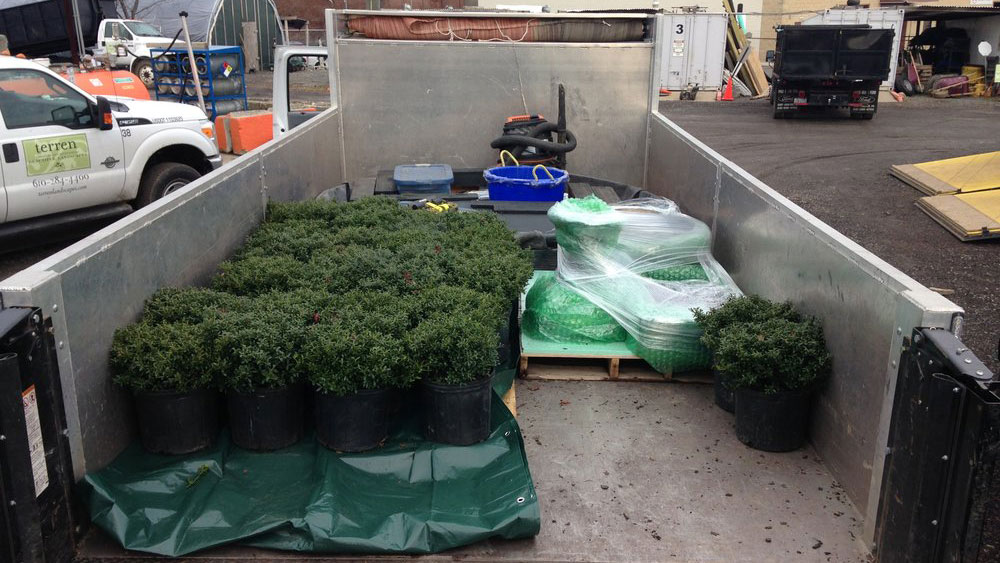 Truck Loaded With Plants For Lemon Ball